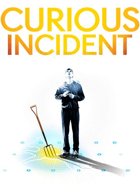 curious incident of the the curious incident of the in the time the play
