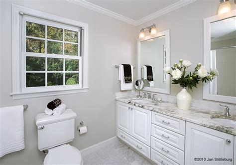 staging a small bathroom bathroom staging puppy perspective home design 2 sell