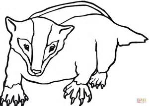 Badger Coloring Page american badger coloring page free printable coloring pages