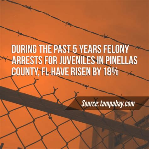 Juvenile Arrest Records County Criminal Statistics Juvenile Felonies Pinellas County Fl