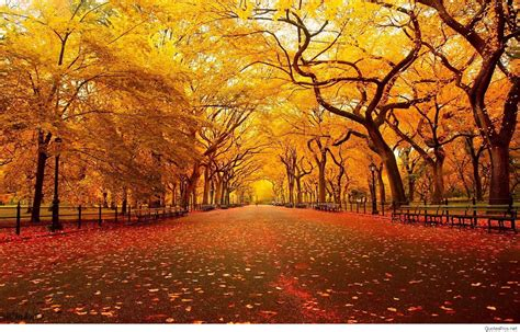 for fall hello autumn september fall images wallpapers hd