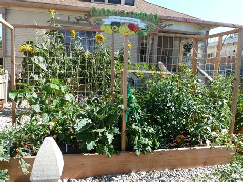 Small Veg Garden Ideas 11 Pictures To Start Vegetable Gardening In Small Spaces