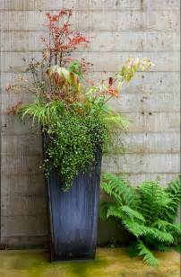 Large Potted Plants For Patio by Tips For Using Large Outdoor Planters Front Yard