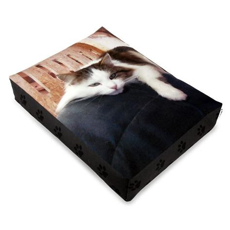 luxury cat beds cat bed design luxury cat bed on bags of love