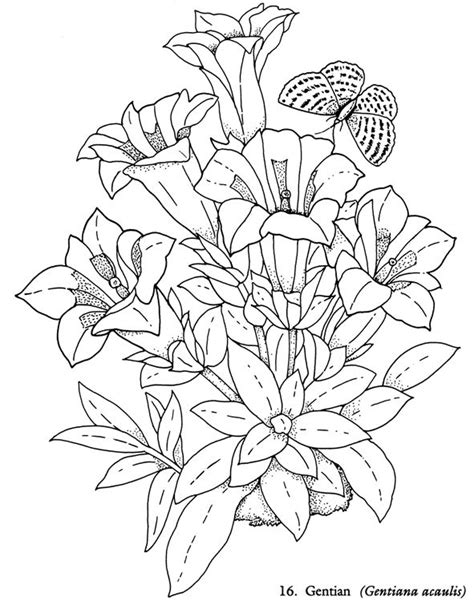 flower coloring book 1000 images about coloring pages flowers on
