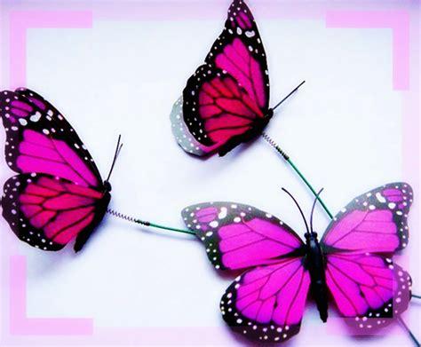 imagenes mariposas gratis mariposas gratis para descargar rosadas im 225 genes de