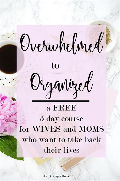 photo organizing made easy going from overwhelmed to overjoyed books overwhelmed to organized free course just a simple home