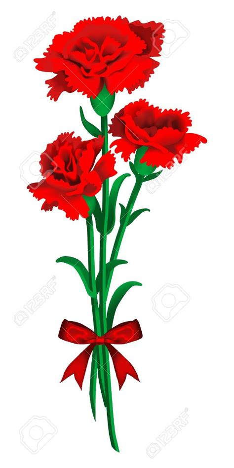 Carnation Clipart carnations clipart clipground