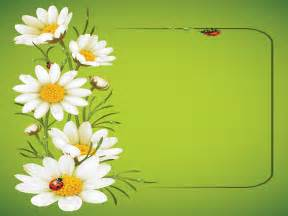 ladybug and daisies ppt template ppt backgrounds flowers