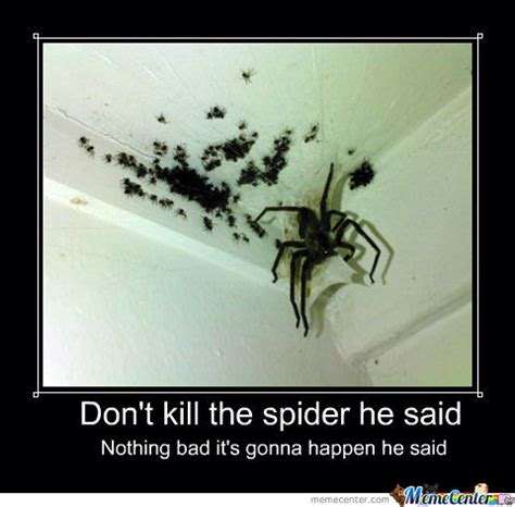 Killing Spiders Meme - don t kill the spider by mustnotfap meme center