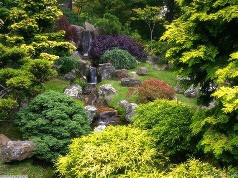 Tea Garden by Japanese Tea Garden Golden Gate Park Wallpaper 6473