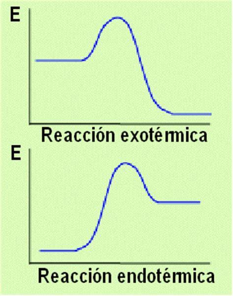 reacciones exotermicas y endotermicas biologia 1 cibertareas reacciones exot 233 rmicas y endot 233 rmicas neetescuela