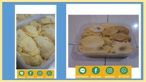 081910081601 durian goreng durian hutan durian kura kura