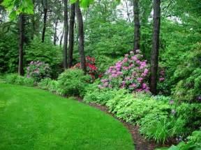 lovely backyard perennial border garden dreams