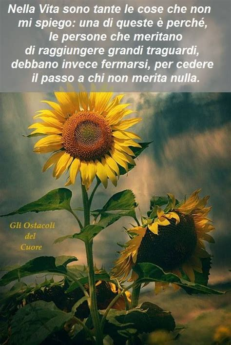Sunflower Kitchen Ideas Dalla Pagina Facebook Quot Gli Ostacoli Del Cuore Quot Parole E