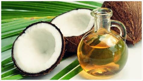 artikel cara membuat minyak kelapa murni ayo ketahui cara membuat minyak kelapa