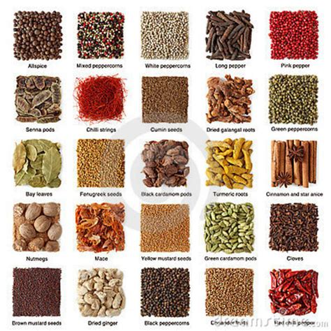 What Is The Shelf Of Dried Spices by Spices Manufacturer Inchengalpattu Tamil Nadu India By Rr