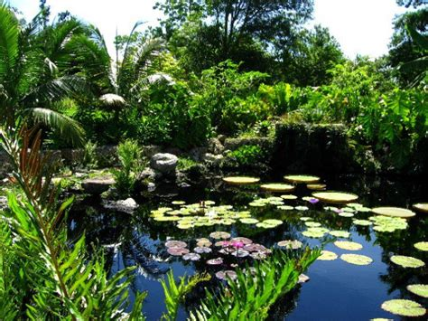 fairchild tropical botanical gardens the most beautiful gardens in the world part ii world