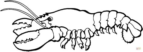 lobster 1 coloring page free printable coloring pages