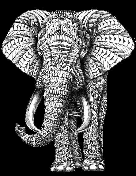 pattern elephant art tribal pattern elephant south east asia pinterest