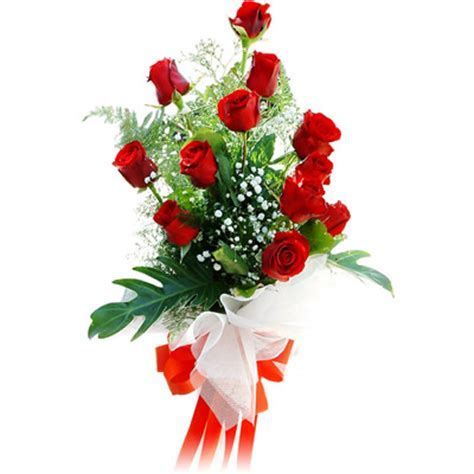 12 Red Roses Stylish Bunch With Red Bow ? (For Other