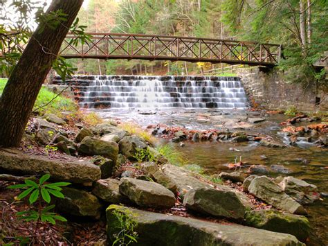 Ravine Gardens State Park by Places In Florida You May Never Heard Of