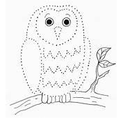 Owl Dot Drawing  Samantha Bell