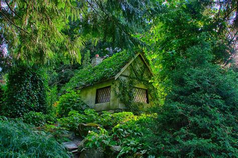 Diy House Plans 20 perfect lonely little houses blending in nature for the