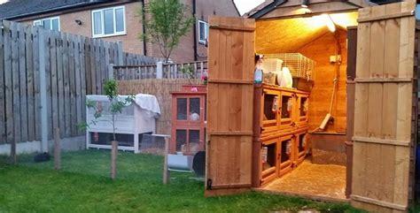 Rabbit Hutch Plans Housing A Lionhead Rabbit Lionheadrabbit Com