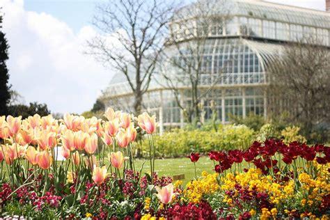 dublin national botanic gardens national botanic gardens dublin the of exploring