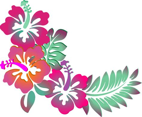 tropical pattern png corner vector png google search vector pinterest