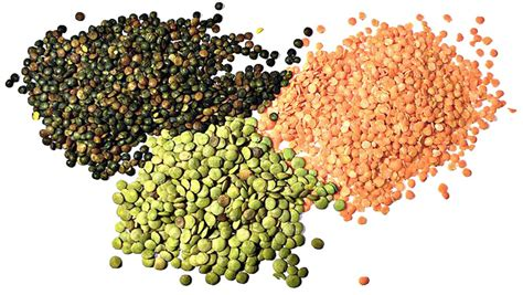 protein vegetables 8 high protein vegetables