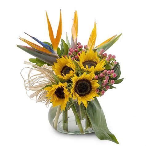 girasoli in vaso vendita composizione di girasoli e sterlizie