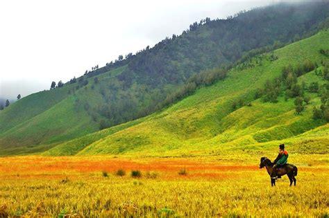 Kaos Gunung Jangan Lupa Piknik 16 padang rumput cantik yang akan membuatmu semakin