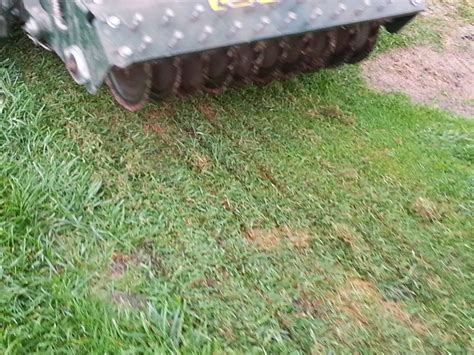 slit seeding top lawn care