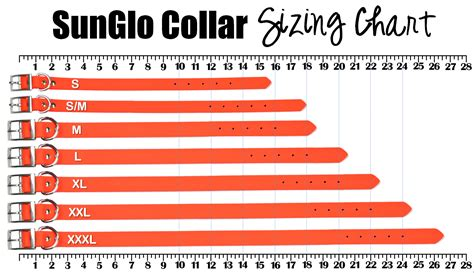 puppy collar size sunglo waterproof collars no stink waterproof collars high visibility colors