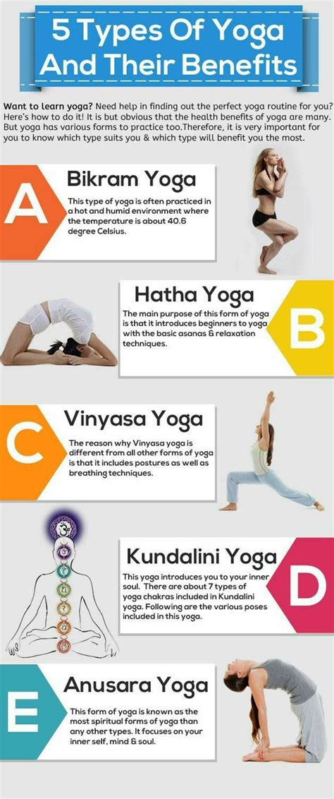 what is the difference in the different types of bellami hair different types of yoga infographic