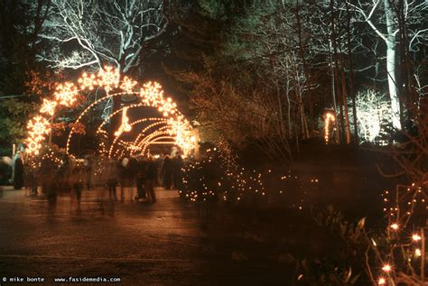Bronx Zoo Lights Mike Bonte Photos Ramblings