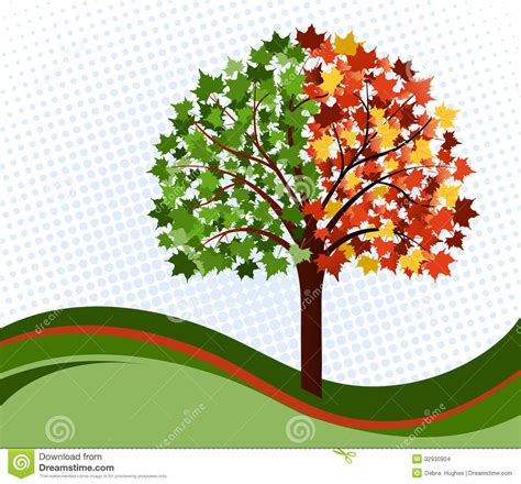 chagne tree changing seasons tree stock images image 32930904