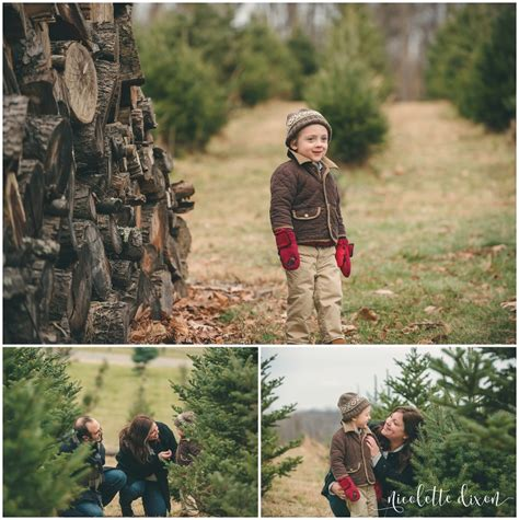 pittsburgh christmas tree farms nutbrown s tree farm pittsburgh maternity photographer pittsburgh newborn