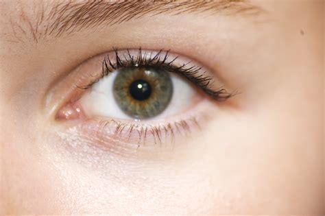 Aubeau Eye Brow By Yobel Cosmetics ausgezeichnet menschliche anatomie nase zeitgen 246 ssisch