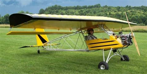 backyard flyer ultralight byf light aircraft db sales