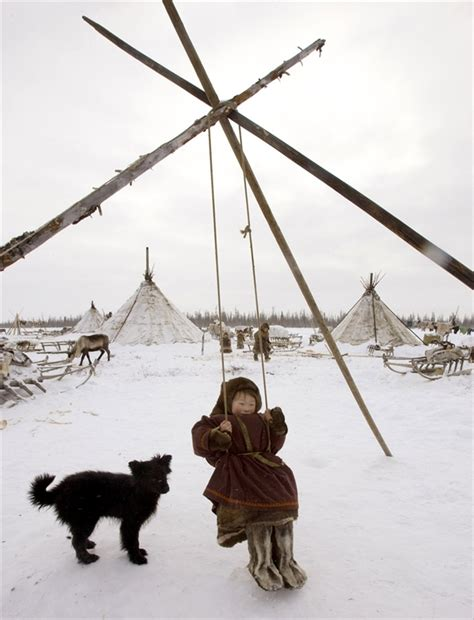 russian swing for sale 165 best images about the nenets of siberia arctic