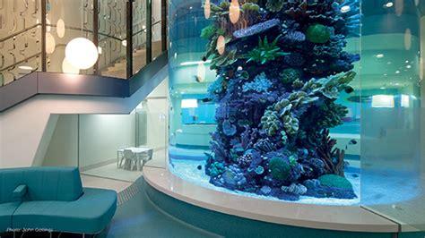 aquarium design great portland street the royal children s hospital the royal children s hospital