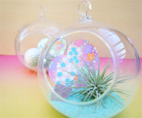 Diy Bedrooms valentine s day diy a pastel air plant terrarium