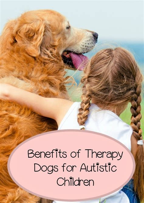 autism therapy dogs benefits of therapy dogs for autistic children