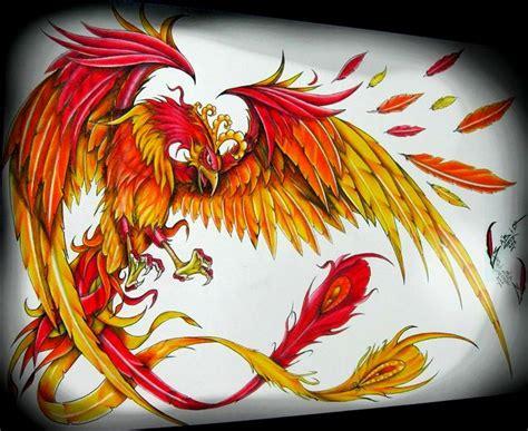htc tattoo phoenix 11 best phoenix images on pinterest phoenix bird tattoo