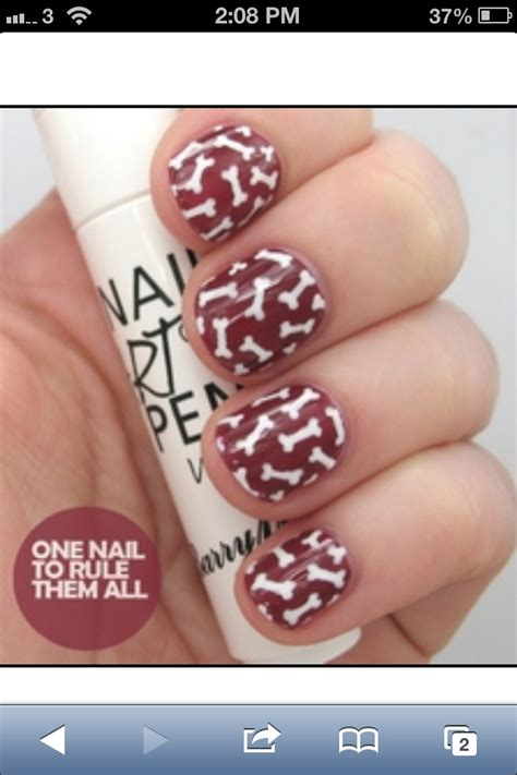 jamberry with boston terrier 1000 images about doggy nail art on pinterest