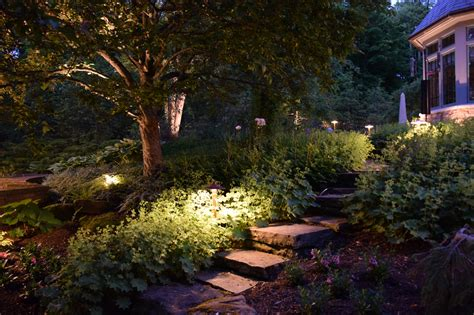 Landscape Tree Lighting Issaquah Landscape Lighting Outdoor Lighting Perspectives