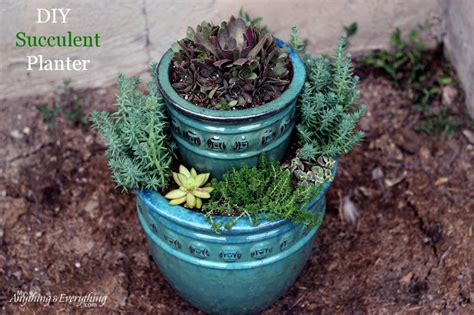 how to make a succulent planter succulent planter anything everythinganything everything